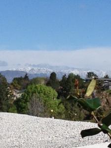backyard view 2-13