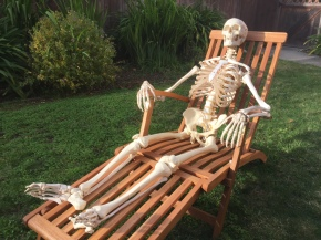 Introducing: The Skeleton in myCloset