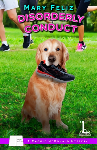 Cover_Disorderly Conduct (Book 4)