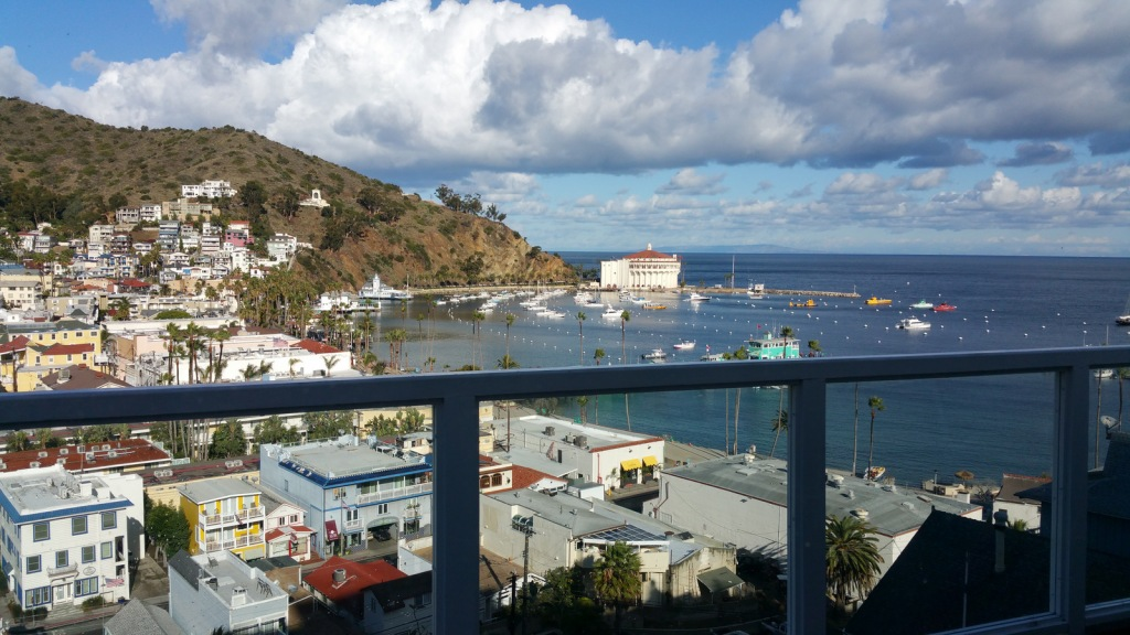 Picture of Catalina from patio